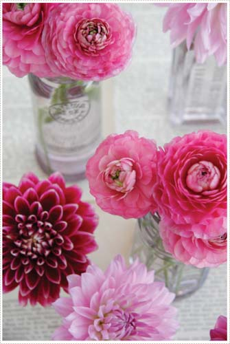 Dahlias from A Creative Mint