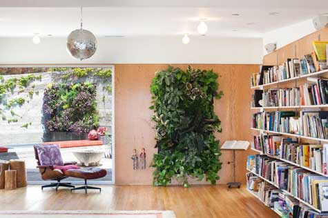Photo of a living room with a window revealing a garden on the left, a vertical hanging garden in the centre and a bookcase to the right.