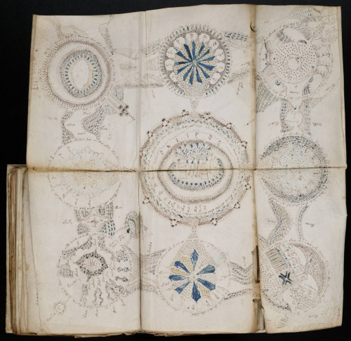 A photo of a page from the Voynich manuscript, the page has been unfolded and embellished with highly detailed illustration in circular patterns. The symbols look like flowers, and some are too small to describe, but the manuscript remains undecyphered to this day.