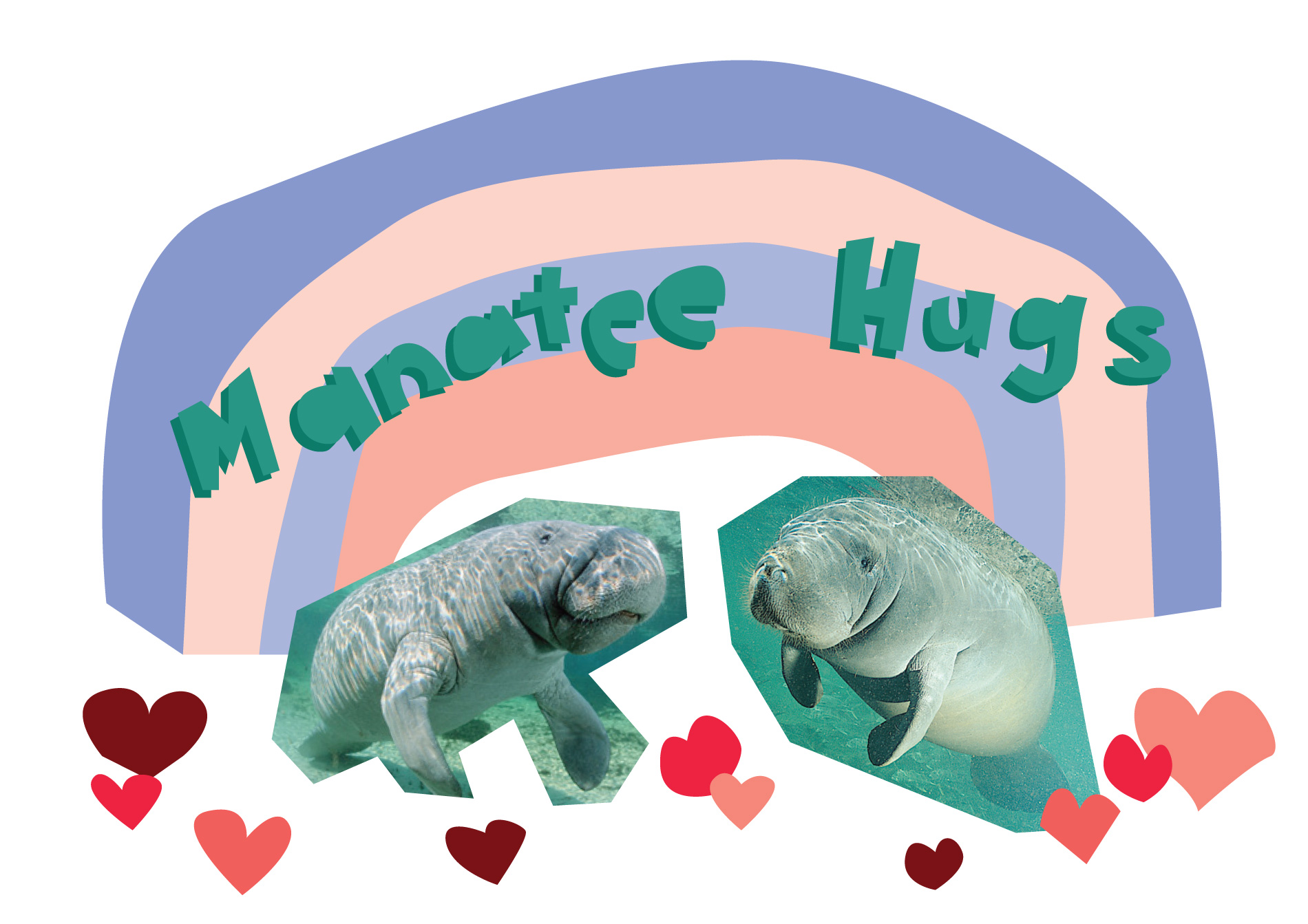 "Illustration with two roughly cut out photos of manatees that look like they're about to embrace with ""Manatee hugs"" above them."
